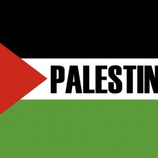 Marche Culturelle Palestinienne